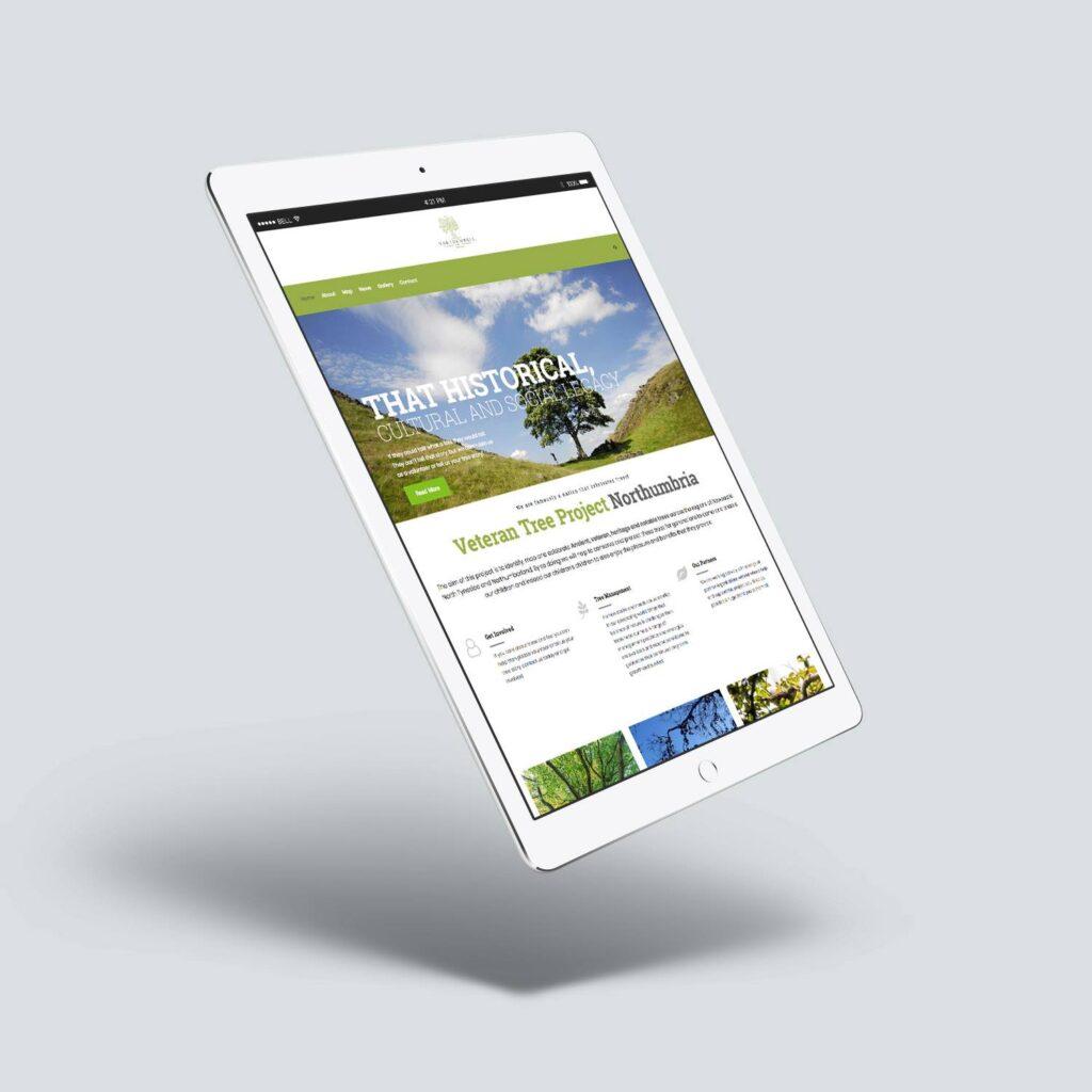 web design services newcastle